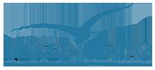 Dedalo Logo